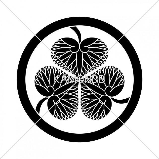 徳川葵(江戸初期)