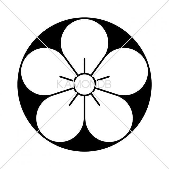 石持地抜梅の花