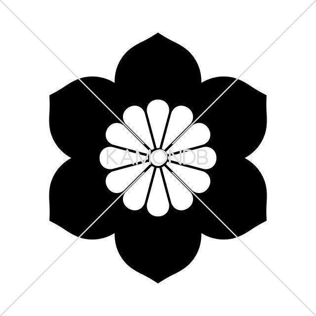 菊座花鉄仙(1)