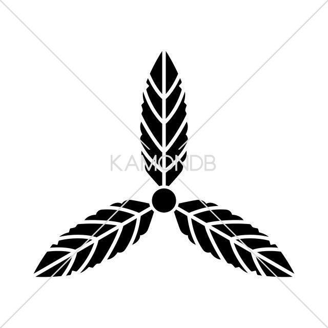 三つ枇杷の葉