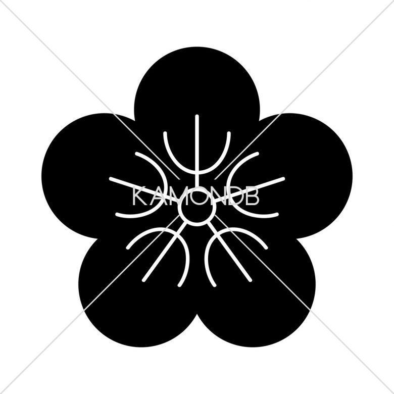 夕顔の花(1)