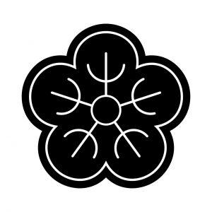 夕顔の花(3)