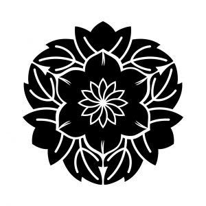 葉敷花鉄仙(1)