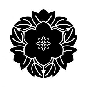 葉敷花鉄仙(2)
