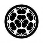 七つ酢漿草