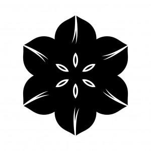 花鉄仙(1)