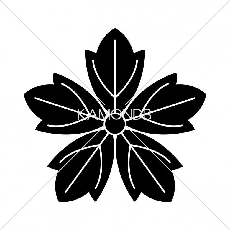 五つ葉牡丹