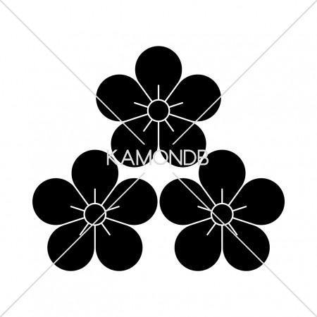 三つ盛梅の花