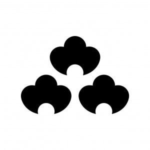 三つ盛藤の花