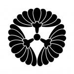三つ横見菊
