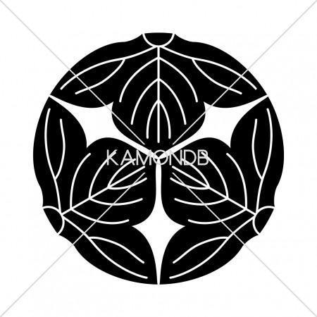 三つ割葛の葉