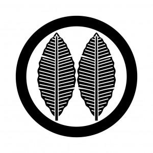 丸に並び芭蕉(1)