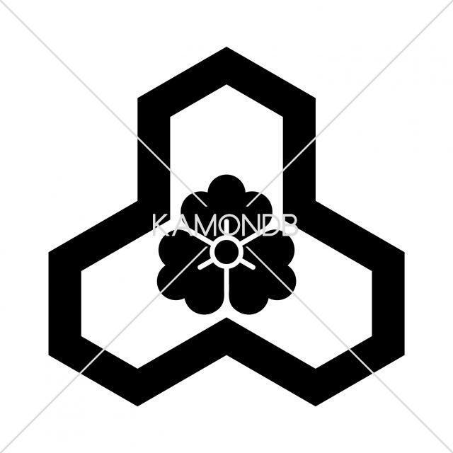 変わり花亀甲