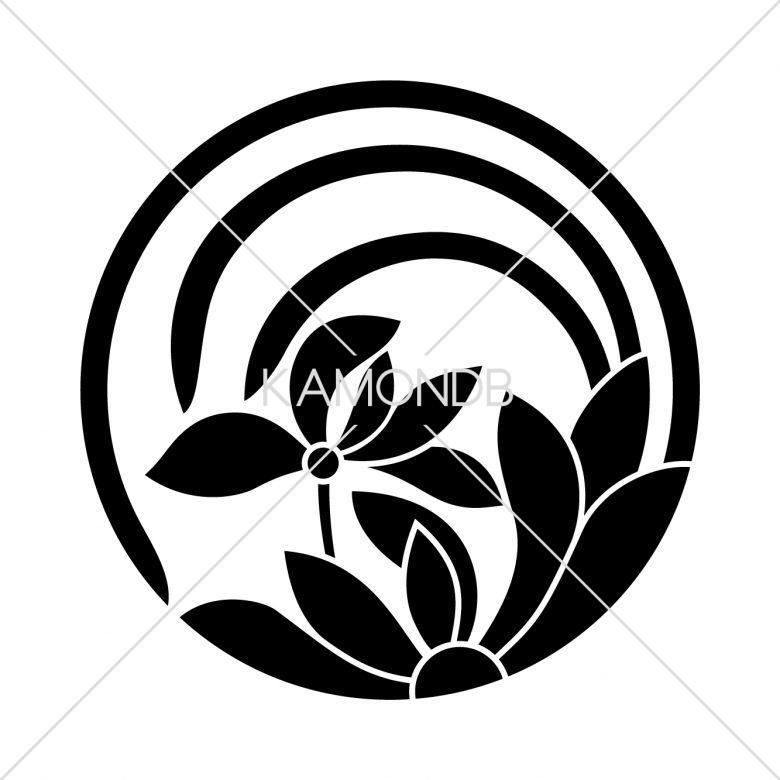 一つ蘭の丸(1)