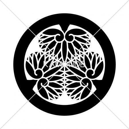 紀州三つ葵