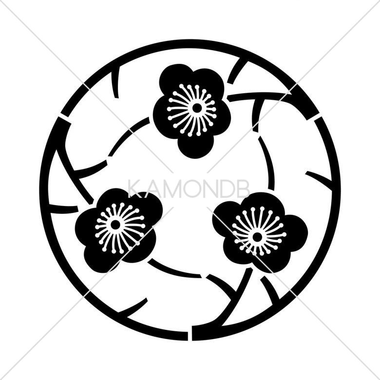 三つ追い枝梅の丸