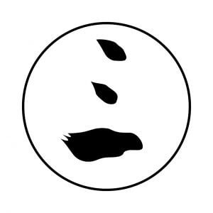 毛輪に三文字(1)
