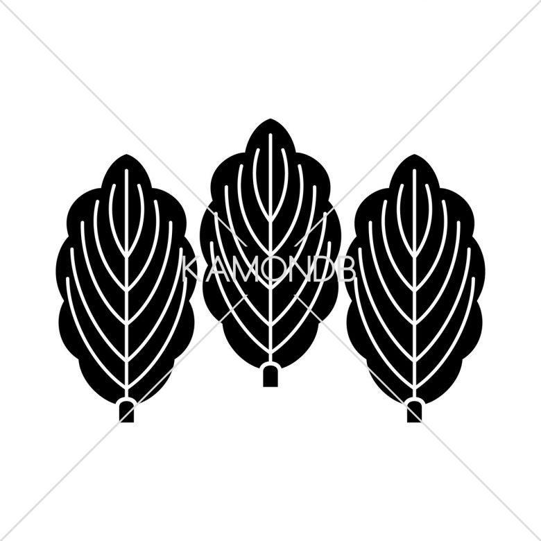 三枚並び柏