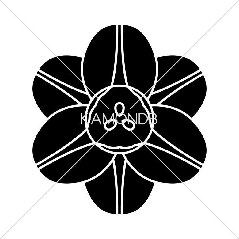 変わり水仙の花