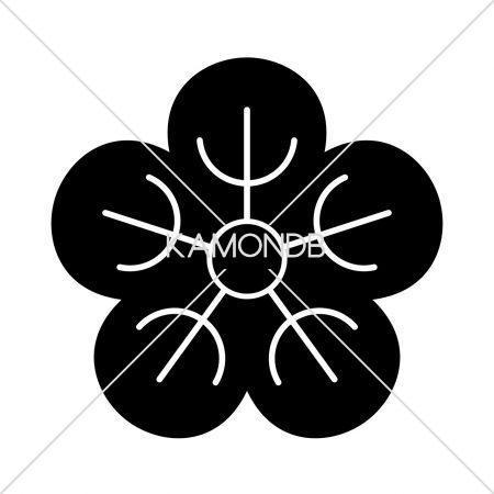 夕顔の花(2)