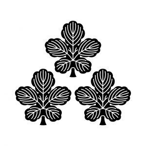 三つ盛梶の葉