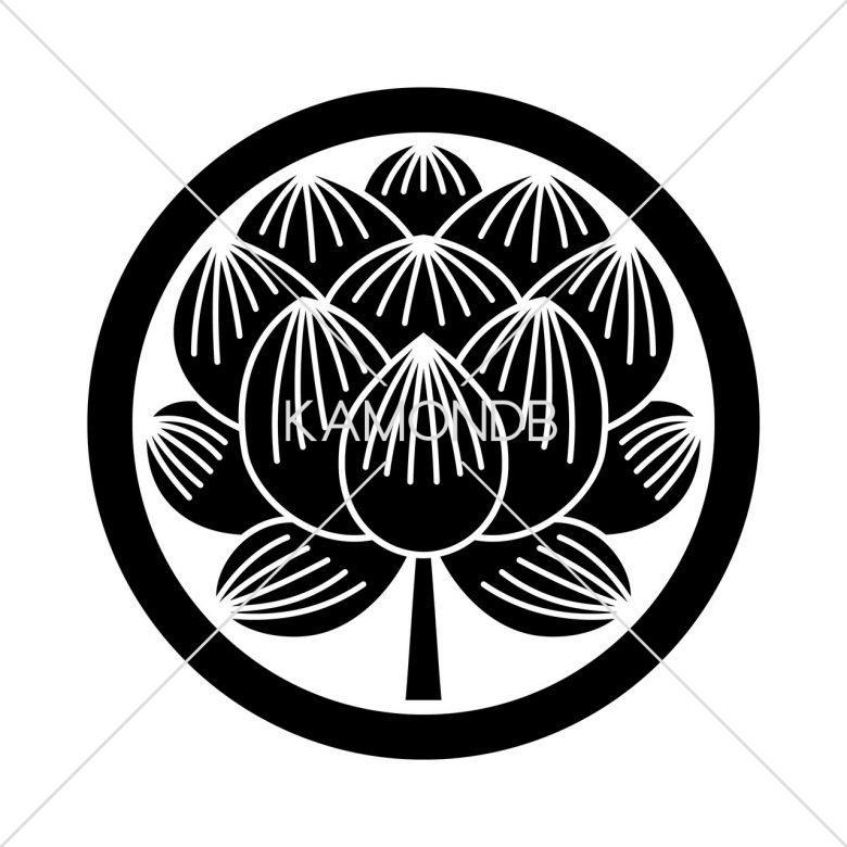 中輪に蓮の花